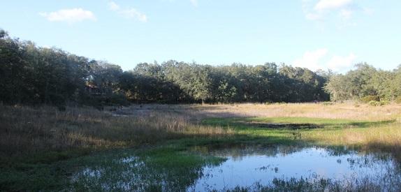 Ashton pond small