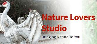 Nature Lovers Studio